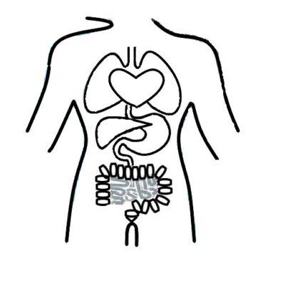 Pictogram voor organen